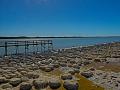stromatolithen-in-mandurah_25231414983_o